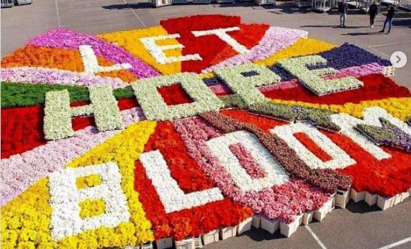 Amsterdam: Let Hope Bloom